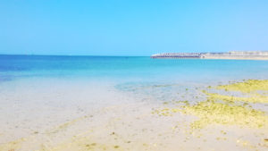 堤防の見えるビーチ